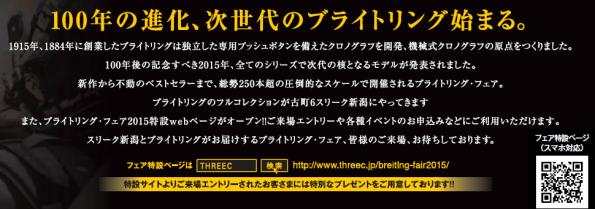BR 2015 2