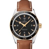 omega-seamaster-seamaster-300-23322412101001-l